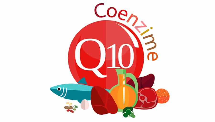 ¿Qué es la coenzima Q10 en las cremas?